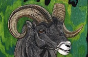 Goat Drawings Posters - Stone Sheep Ram  Poster by Don  Gallacher