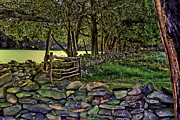 Stone Walled Print by Tom Prendergast