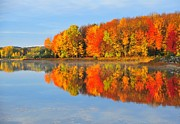 Image Prints - Stoneledge Lake in Autumn Print by Terri Gostola