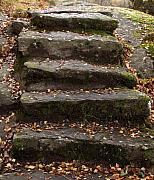 Stone Steps Prints - Stony Steps Print by Lutz Baar