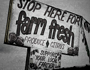 Local Food Photo Posters - Stop Here Poster by Joan Carroll