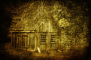 Shed Photo Acrylic Prints - Stories Within Acrylic Print by Andrew Paranavitana