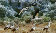 Stork Painting Framed Prints - Storks Framed Print by Georgi Dimitrov