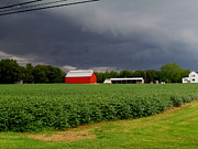 Farming Barns Prints - Storm Brewing Print by Trish Clark