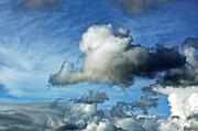 Susan Wiedmann - Storm Clouds Gathering