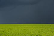 Farmland Art - Storm Field Abstract by Tim Gainey
