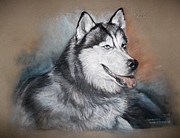 Husky Drawings Metal Prints - Storm Metal Print by Jennifer Christenson