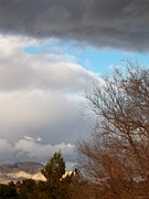 Distant Trees Posters - Storm Rolling In Poster by Glenn McCarthy Art and Photography