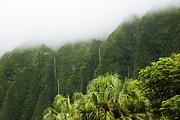 Charmian Vistaunet - Storm Waterfalls