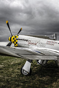 P51 Mustang Posters - Storms above a Mustang Poster by Chris Smith