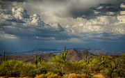 Southwest Landscape Art - Storms Over the Sonoran Desert  by Saija  Lehtonen