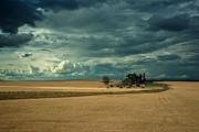 Randall Branham - STORMY FARM