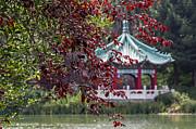 Kate Brown - Stow Lake Pavilion