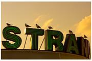 Strand Print by Tom Gari Gallery-Three-Photography