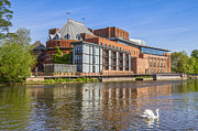 Swan Art Prints - Stratford upon Avon Royal Shakespeare Theatre Print by Colin and Linda McKie