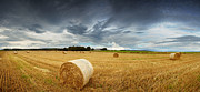 Rural Landscape Prints - Straw bales pano Print by Jane Rix