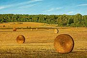 Hay Bales Painting Framed Prints - Straw Wheels - North Pickering Framed Print by Allan OMarra