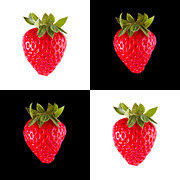 Bryan Freeman Metal Prints - Strawberries Metal Print by Bryan Freeman