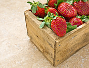 Strawberry Photo Framed Prints - Strawberries Framed Print by Edward Fielding