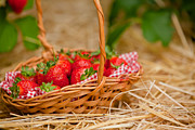 Simon Bratt Photography LRPS - Strawberries in a wicker basket