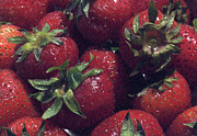 Ripe Photo Originals - Strawberries by William Ragan