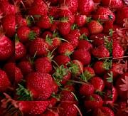 Gail Matthews - Strawberry Bounty