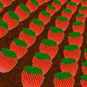 Strawberry Digital Art Prints - Strawberry Fields Forever Print by Andee Photography