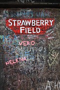 Strawberry Drawings Posters - Strawberry Fields Poster by Paul Horton