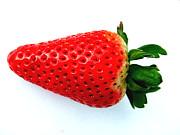 Joe Cashin - Strawberry