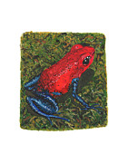 Dart Paintings - Strawberry Poison Dart Frog by Cindy Hitchcock