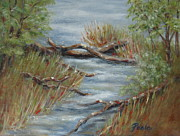 Pamela Poole - Stream at Lake Benson