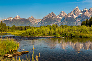 Stream At The Tetons Print by Robert Bynum