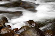 White River Photo Metal Prints - Stream flowing  Metal Print by Les Cunliffe