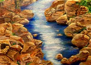 Fishing Creek Prints - Stream in Colorado Mountains close to Ouray Print by Janis  Tafoya