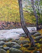 Jerry Zelle - Stream in the Smokies