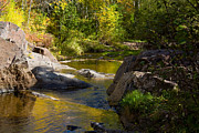 Duluth Art - Stream by Maria Humphreys