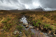 Rannoch Photo Prints - Stream on Rannoch Moor  Print by Gary Eason