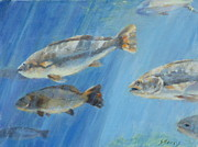 Fish Underwater Paintings - Streaming Light by Sandra Harris