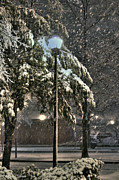 Snowy Night Photo Framed Prints - Street Lamp in the Snow Framed Print by Benanne Stiens