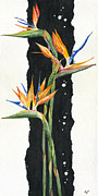Lush Green Drawings Posters - Strelitzia - Bird Of Paradise 11 Poster by Elena Yakubovich