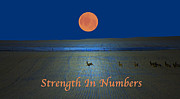 Does. Winter Prints - Strength In Numbers Print by Laura Bentley