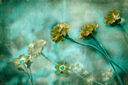 Texture Floral Prints - Stretching Toward Morning Print by Bonnie Bruno