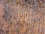 Lichen Photo Posters - Striped Sandstone Poster by Hakon Soreide