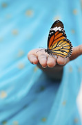 White Cloth Prints - Striped Tiger Butterfly Print by Tim Gainey