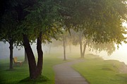 Path Photo Prints - Stroll in the Fog Print by Terri Gostola