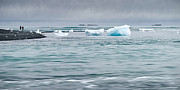 Jökulsá Prints - Strolling Among the Mini-Bergs Print by Royce Howland