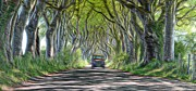 Dark Hedges Prints - Strong Oils  Print by Mark Hinds