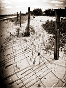 Beach Fence Metal Prints - Strong Winds Metal Print by Colleen Kammerer