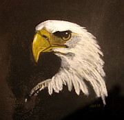 Harrison Painting Originals - Stuarts Eagle by Joseph Hawkins