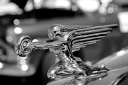 Elizabeth Budd - Studebaker Hood Ornament